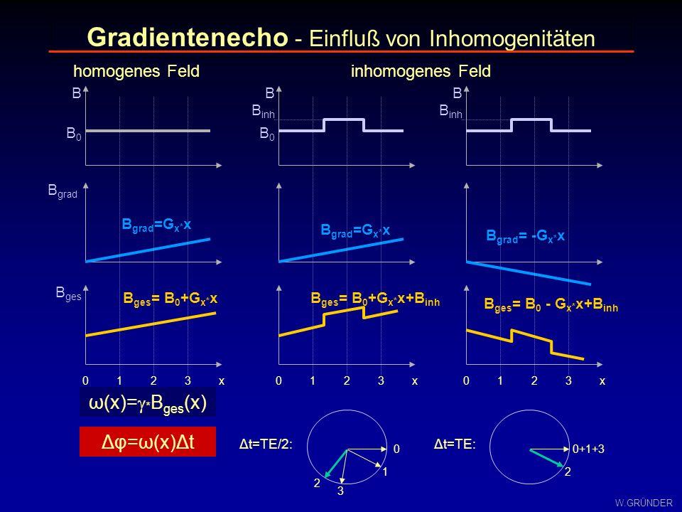 W.GRÜNDER Δφ=ω(x)Δt ω(x)= * B ges (x) B ges = B 0 +G x * x+B inh B B grad B ges B0B0 B grad =G x * x B ges = B 0 +G x * x B B0B0 B grad =G x * x B inh