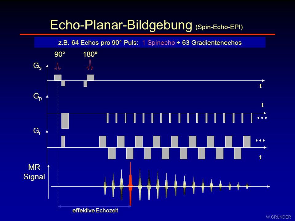 W.GRÜNDER GsGs t 90°180° GrGr t Echo-Planar-Bildgebung (Spin-Echo-EPI) z.B. 64 Echos pro 90° Puls: 1 Spinecho + 63 Gradientenechos t GpGp effektive Ec