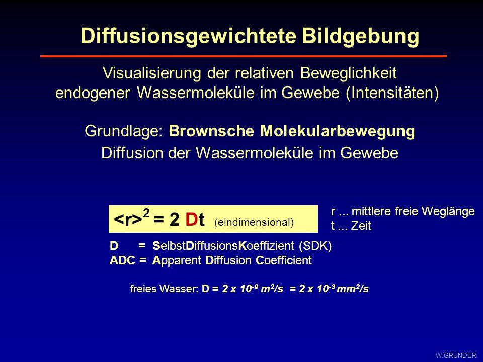 W.GRÜNDER Visualisierung der relativen Beweglichkeit endogener Wassermoleküle im Gewebe (Intensitäten) Grundlage: Brownsche Molekularbewegung Diffusio