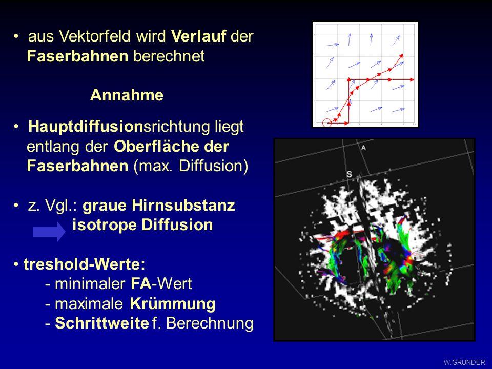 W.GRÜNDER aus Vektorfeld wird Verlauf der Faserbahnen berechnet Annahme Hauptdiffusionsrichtung liegt entlang der Oberfläche der Faserbahnen (max. Dif