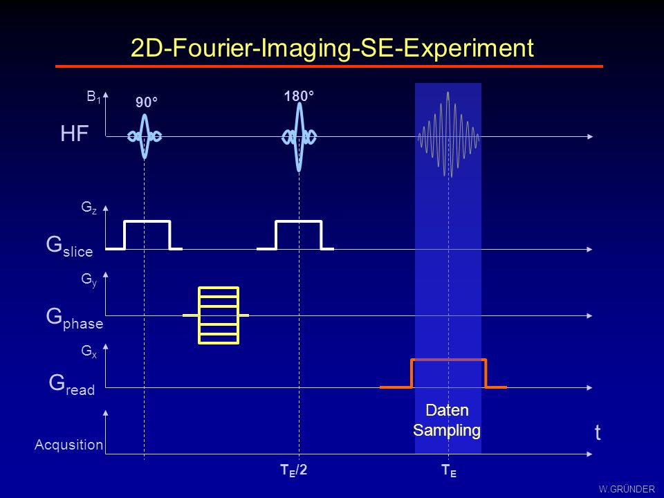 W.GRÜNDER G slice GzGz G phase GyGy G read GxGx HF B1B1 TETE t Acqusition 2D-Fourier-Imaging-SE-Experiment 90° T E /2 180° Daten Sampling