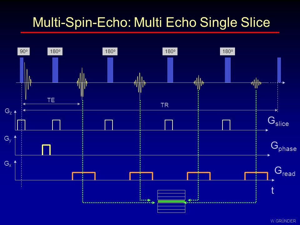 W.GRÜNDER Multi-Echo-Techniken Verwendung mehrerer Echos mit verschiedenen Phasen- kodierschritten zur Füllung des k-Raums ursprüngliche Idee von Hennig et al.