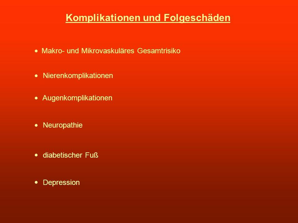 Komplikationen und Folgeschäden Makro- und Mikrovaskuläres Gesamtrisiko Nierenkomplikationen Augenkomplikationen Neuropathie diabetischer Fuß Depressi