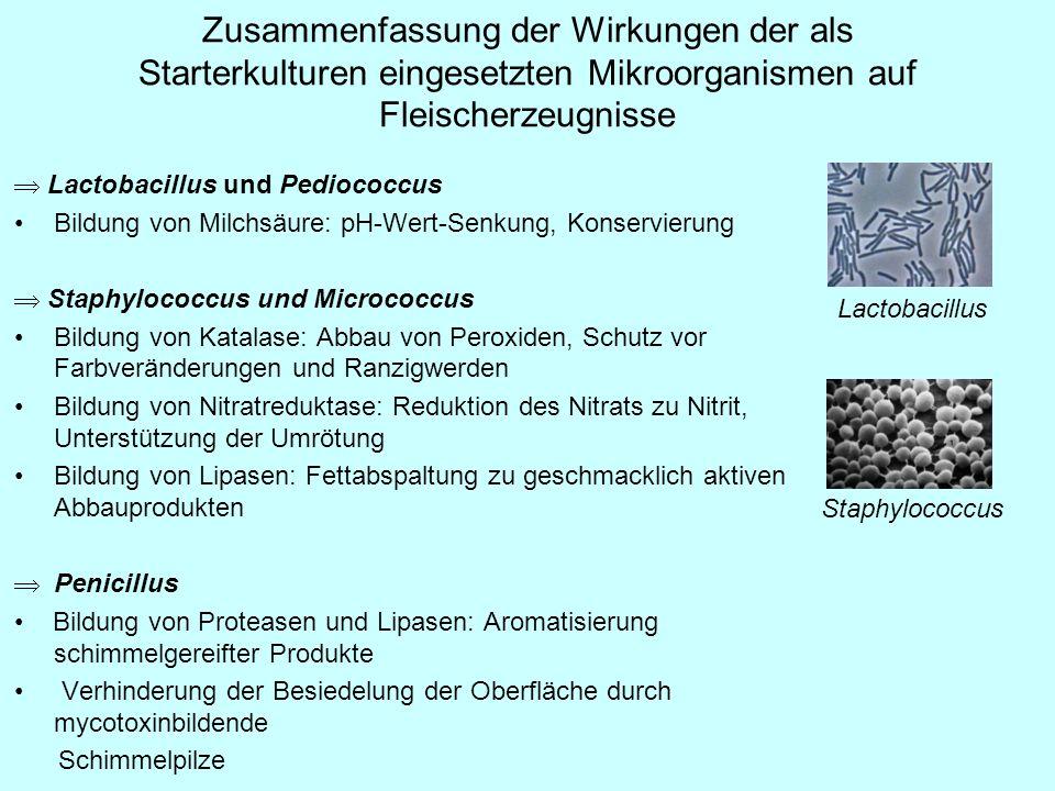 Starterkulturen und Gentechnik Lebensmittel, die einen lebenden gentechnisch veränderten Organismus (GVO) enthalten oder solche darstellen, in Deutschland nicht im Verkehr (keine Marktzulassung) aber sehr viele Erzeugnisse (z.