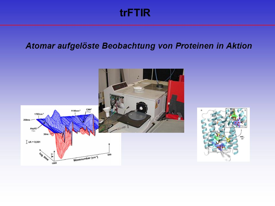 Anwendung Fehlfunktion von Proteinen Auslöser vieler Krankheiten Untersuchung molekularer Reaktionsmechanismen Verständnis Struktur, Funktion und Interaktion von Proteinen Voraussetzung Entwicklung gezielter wirkender pharmakologische Substanzen mit weniger Nebenwirkungen
