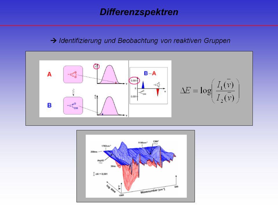 Identifizierung und Beobachtung von reaktiven Gruppen Differenzspektren
