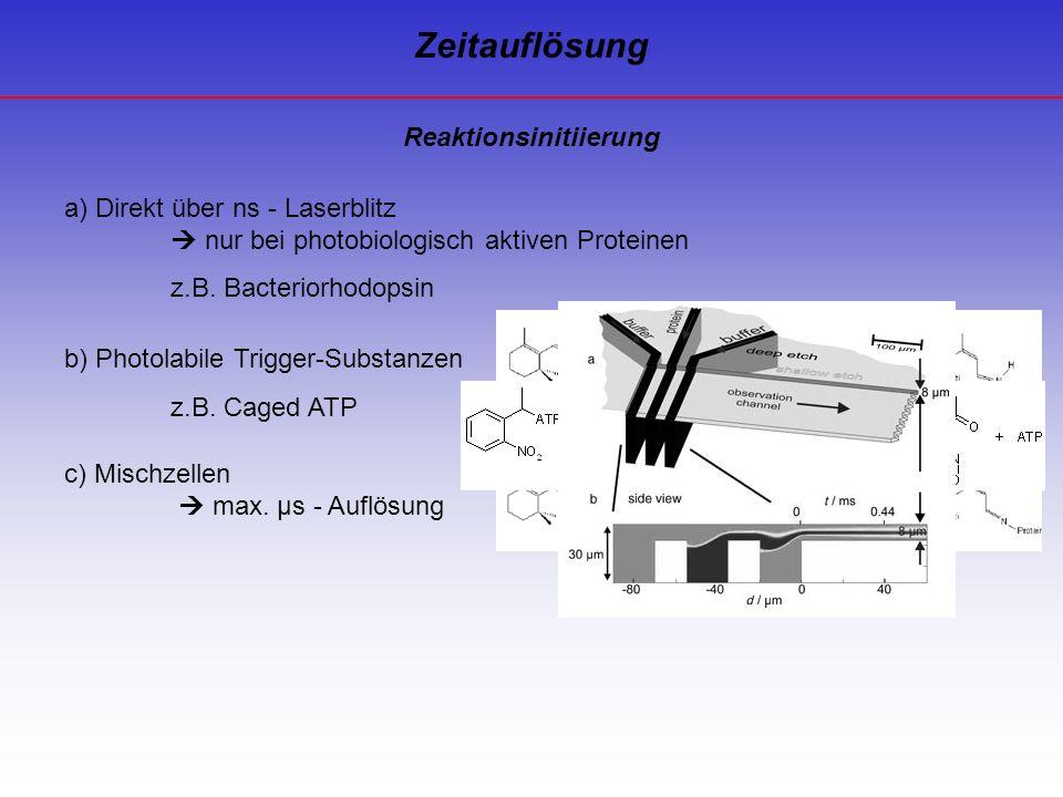 Reaktionsinitiierung Zeitauflösung a) Direkt über ns - Laserblitz nur bei photobiologisch aktiven Proteinen z.B. Bacteriorhodopsin b) Photolabile Trig