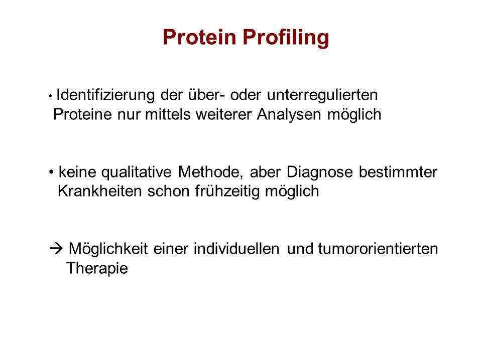 Identifizierung der über- oder unterregulierten Proteine nur mittels weiterer Analysen möglich keine qualitative Methode, aber Diagnose bestimmter Kra