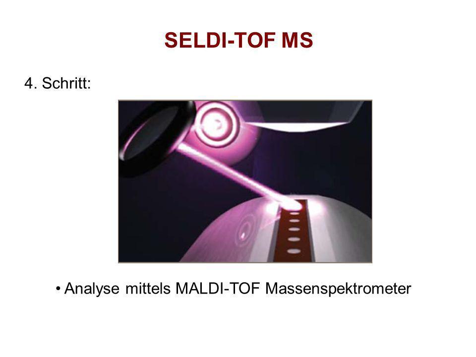 SELDI-TOF MS 4. Schritt: Analyse mittels MALDI-TOF Massenspektrometer
