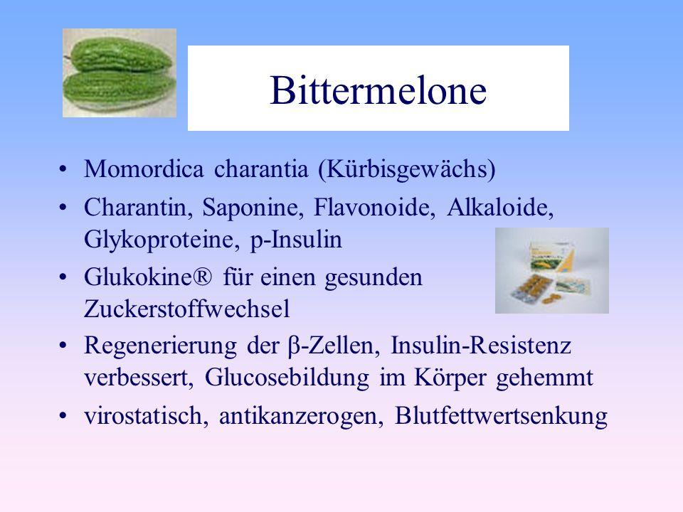 Bittermelone Momordica charantia (Kürbisgewächs) Charantin, Saponine, Flavonoide, Alkaloide, Glykoproteine, p-Insulin Glukokine® für einen gesunden Zuckerstoffwechsel Regenerierung der β-Zellen, Insulin-Resistenz verbessert, Glucosebildung im Körper gehemmt virostatisch, antikanzerogen, Blutfettwertsenkung