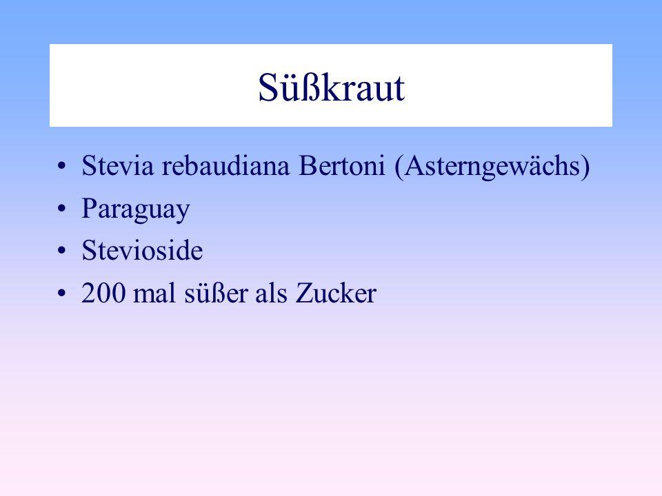 Süßkraut Stevia rebaudiana Bertoni (Asterngewächs) Paraguay Stevioside 200 mal süßer als Zucker