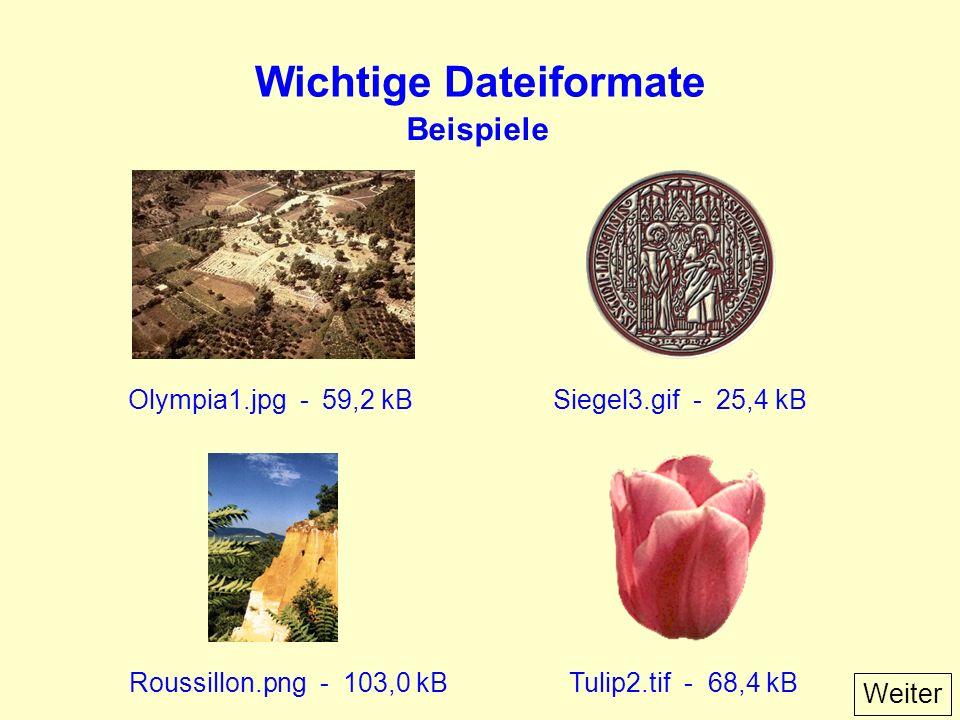 Wichtige Dateiformate Olympia1.jpg - 59,2 kBSiegel3.gif - 25,4 kB Roussillon.png - 103,0 kBTulip2.tif - 68,4 kB Beispiele Weiter