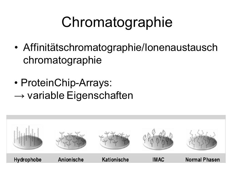 Chromatographie Affinitätschromatographie/Ionenaustausch chromatographie ProteinChip-Arrays: variable Eigenschaften