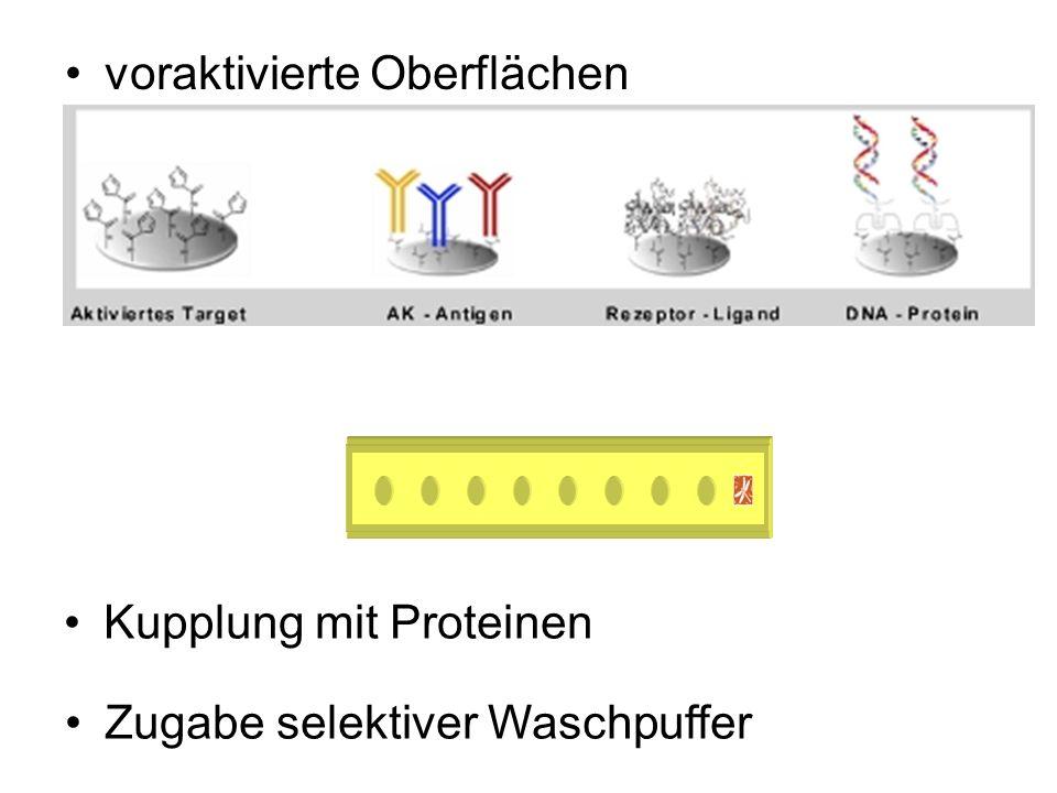 voraktivierte Oberflächen Kupplung mit Proteinen Zugabe selektiver Waschpuffer Bsp.: Aluminium-Streifen mit 8 oberflächenaktiven Spots