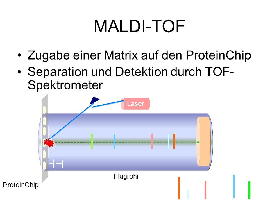 MALDI-TOF Zugabe einer Matrix auf den ProteinChip Separation und Detektion durch TOF- Spektrometer ProteinChip Flugrohr Intensity Molecular Mass (Da)