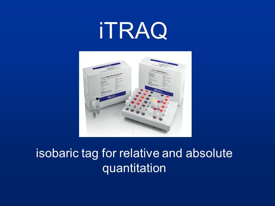 Methode zur absoluten und relativen Quantifizierung von Proteinen Einsatz von isobaren Reagenzien, die an N-Terminus und Lysin-Seitenketten binden Erhalt von MS/MS-Spektren, anhand derer quantifiziert werden kann iTRAQ