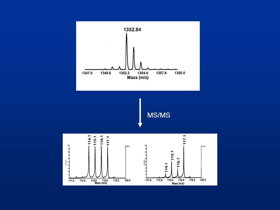 Einsatzbereiche Vergleich von gesunden und kranken Zellen Vergleich der Proteinexpression in verschiedenen Bakterienstämmen absolute Quantifizierung von Proteinen