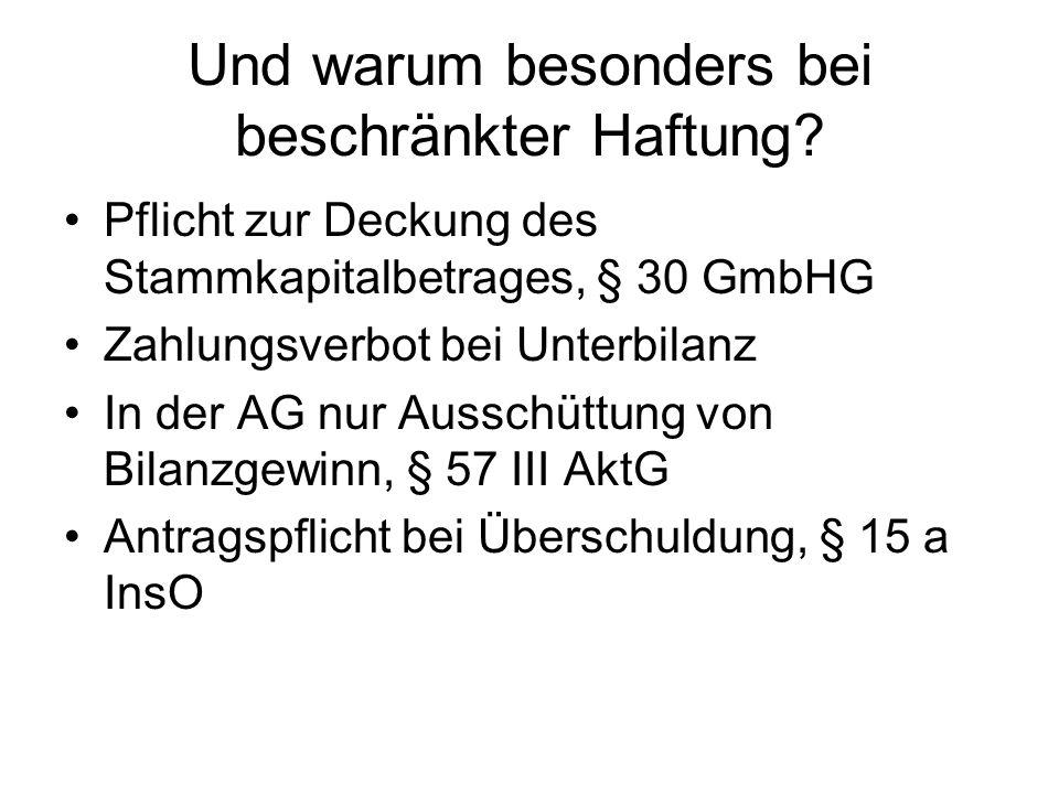 Deshalb: Zusatzvorschriften für Kapitalgesellschaften (und GmbH & Co.