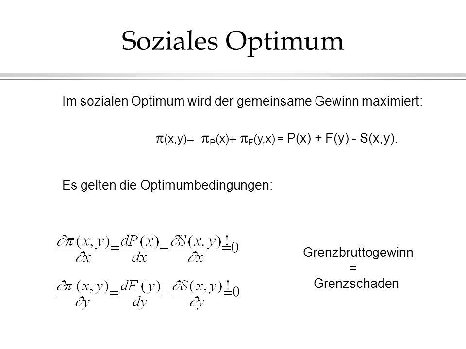 Soziales Optimum Im sozialen Optimum wird der gemeinsame Gewinn maximiert: (x,y) P (x) F (y,x) = P(x) + F(y) - S(x,y). Es gelten die Optimumbedingunge