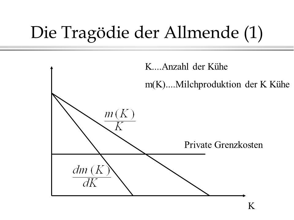 Die Tragödie der Allmende (1) K Private Grenzkosten K....Anzahl der Kühe m(K)....Milchproduktion der K Kühe