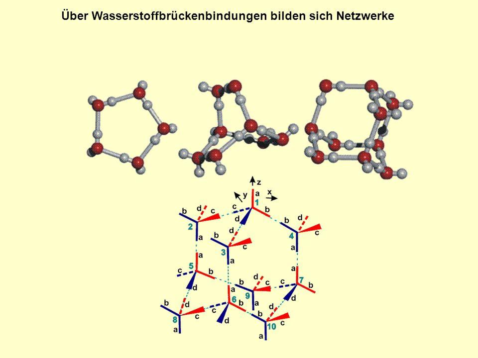Über Wasserstoffbrückenbindungen bilden sich Netzwerke