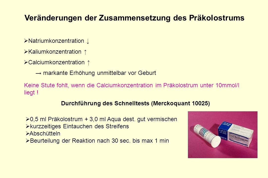 Veränderungen der Zusammensetzung des Präkolostrums Natriumkonzentration Kaliumkonzentration Calciumkonzentration markante Erhöhung unmittelbar vor Ge