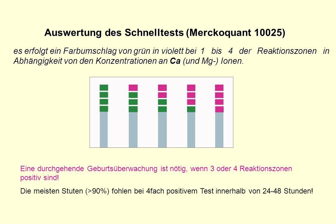 Auswertung des Schnelltests (Merckoquant 10025) es erfolgt ein Farbumschlag von grün in violett bei 1 bis 4 der Reaktionszonen in Abhängigkeit von den