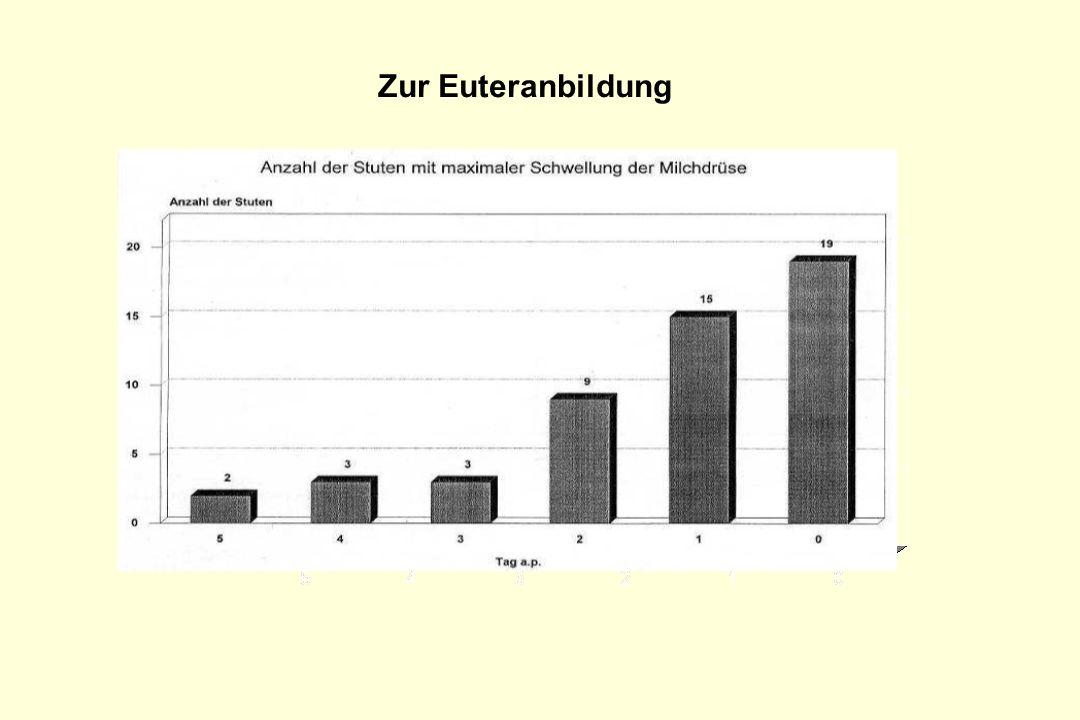 Anzahl der Stuten Zur Euteranbildung
