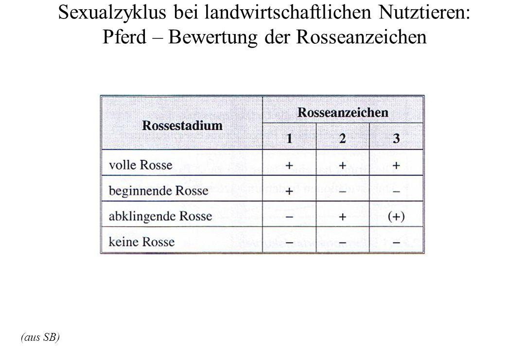 Sexualzyklus bei landwirtschaftlichen Nutztieren: Pferd – Bewertung der Rosseanzeichen (aus SB)