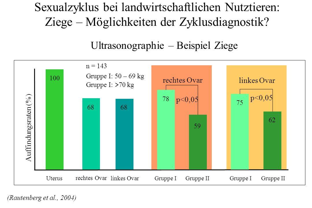 Sexualzyklus bei landwirtschaftlichen Nutztieren: Ziege – Möglichkeiten der Zyklusdiagnostik? Ultrasonographie – Beispiel Ziege rechtes Ovar linkes Ov