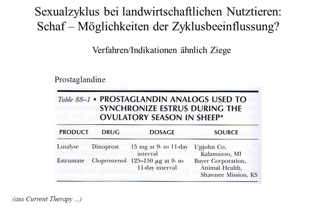 Sexualzyklus bei landwirtschaftlichen Nutztieren: Schaf – Möglichkeiten der Zyklusbeeinflussung? Verfahren/Indikationen ähnlich Ziege Prostaglandine (