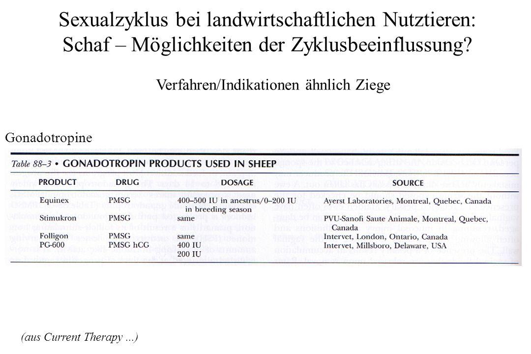 Sexualzyklus bei landwirtschaftlichen Nutztieren: Schaf – Möglichkeiten der Zyklusbeeinflussung? Verfahren/Indikationen ähnlich Ziege Gonadotropine (a