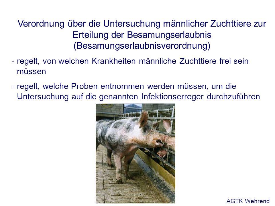 Verordnung über die Untersuchung männlicher Zuchttiere zur Erteilung der Besamungserlaubnis (Besamungserlaubnisverordnung) - regelt, von welchen Krankheiten männliche Zuchttiere frei sein müssen - regelt, welche Proben entnommen werden müssen, um die Untersuchung auf die genannten Infektionserreger durchzuführen AGTK Wehrend