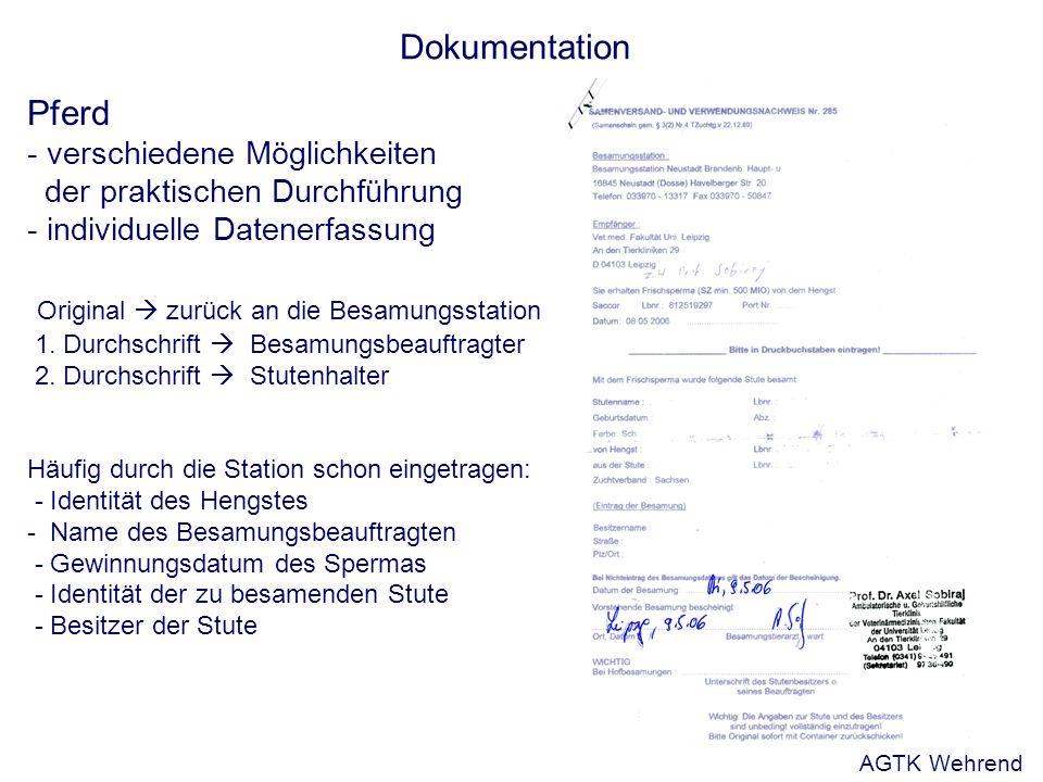 Dokumentation Pferd - verschiedene Möglichkeiten der praktischen Durchführung - individuelle Datenerfassung Original zurück an die Besamungsstation 1.