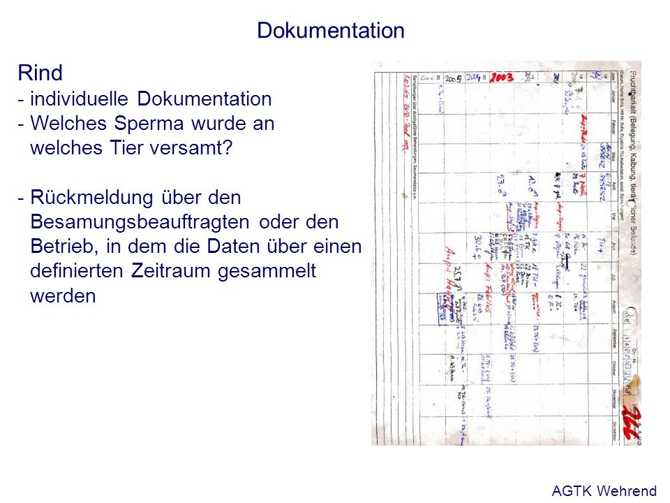 Dokumentation Rind - individuelle Dokumentation - Welches Sperma wurde an welches Tier versamt.
