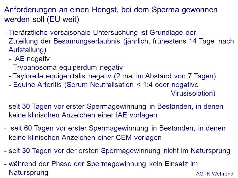 Anforderungen an einen Hengst, bei dem Sperma gewonnen werden soll (EU weit) - Tierärztliche vorsaisonale Untersuchung ist Grundlage der Zuteilung der Besamungserlaubnis (jährlich, frühestens 14 Tage nach Aufstallung) - IAE negativ - Trypanosoma equiperdum negativ - Taylorella equigenitalis negativ (2 mal im Abstand von 7 Tagen) - Equine Arteritis (Serum Neutralisation < 1:4 oder negative Virusisolation) - seit 30 Tagen vor erster Spermagewinnung in Beständen, in denen keine klinischen Anzeichen einer IAE vorlagen - seit 60 Tagen vor erster Spermagewinnung in Beständen, in denen keine klinischen Anzeichen einer CEM vorlagen - seit 30 Tagen vor der ersten Spermagewinnung nicht im Natursprung - während der Phase der Spermagewinnung kein Einsatz im Natursprung AGTK Wehrend