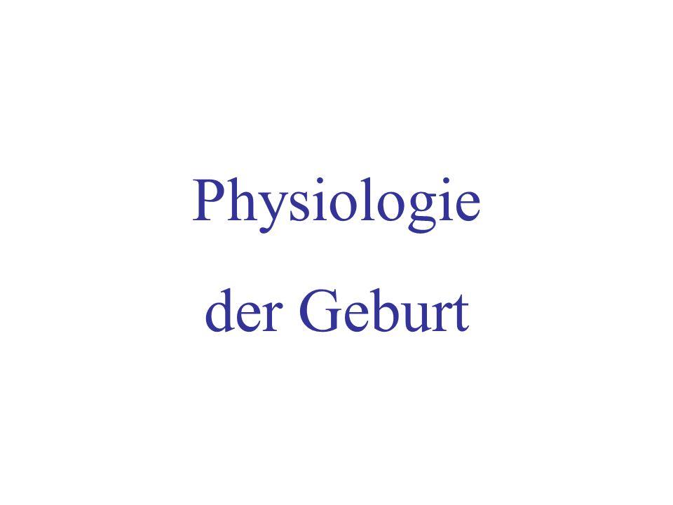 Physiologie der Geburt