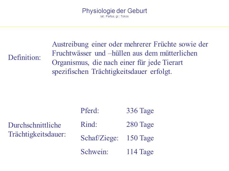 Physiologie der Geburt lat.: Partus, gr.: Tokos Definition: Austreibung einer oder mehrerer Früchte sowie der Fruchtwässer und –hüllen aus dem mütterl