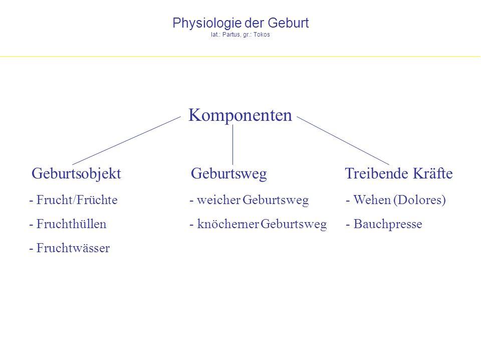 Physiologie der Geburt lat.: Partus, gr.: Tokos Komponenten - Frucht/Früchte - Fruchthüllen - Fruchtwässer - Wehen (Dolores) - Bauchpresse - weicher G