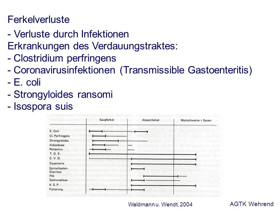 Ferkelverluste - Verluste durch Infektionen Erkrankungen des Verdauungstraktes: - Clostridium perfringens - Coronavirusinfektionen (Transmissible Gastoenteritis) - E.