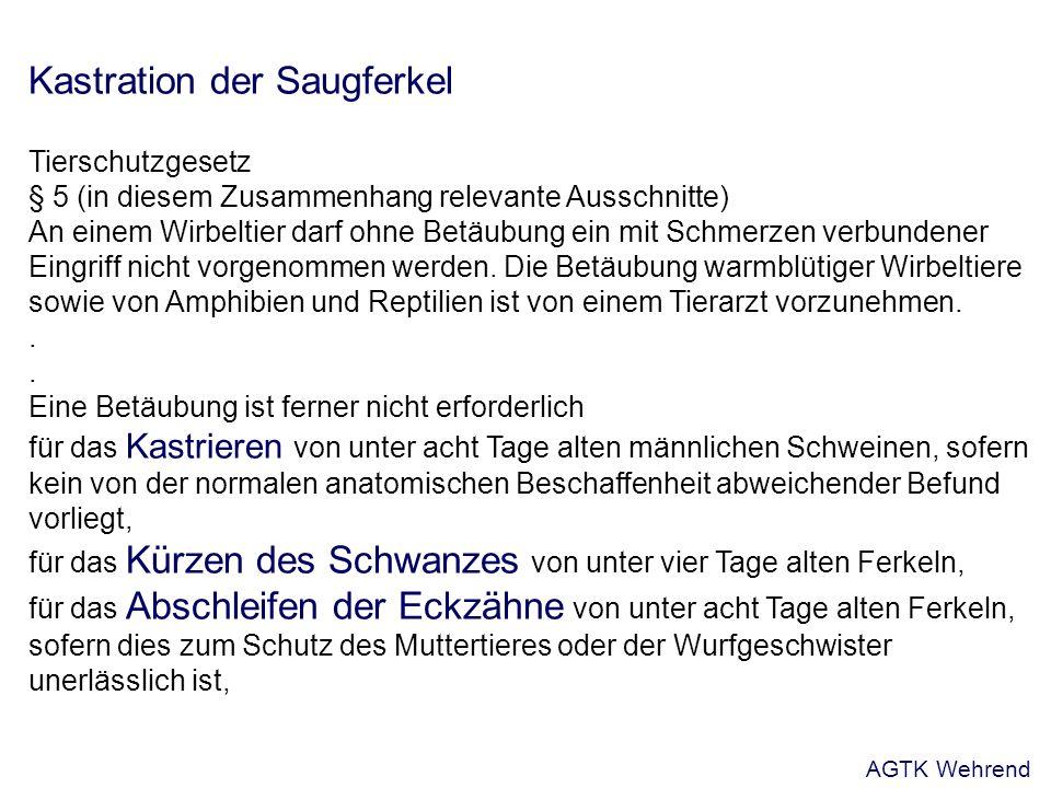 Kastration der Saugferkel Tierschutzgesetz § 5 (in diesem Zusammenhang relevante Ausschnitte) An einem Wirbeltier darf ohne Betäubung ein mit Schmerzen verbundener Eingriff nicht vorgenommen werden.