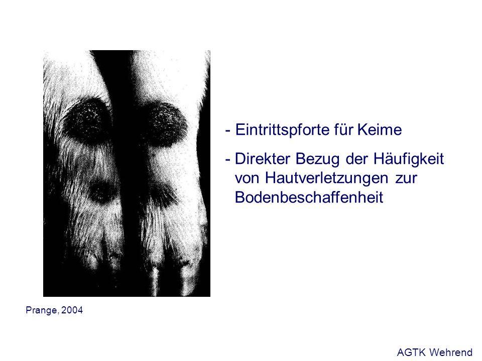 - Eintrittspforte für Keime - Direkter Bezug der Häufigkeit von Hautverletzungen zur Bodenbeschaffenheit Prange, 2004 AGTK Wehrend