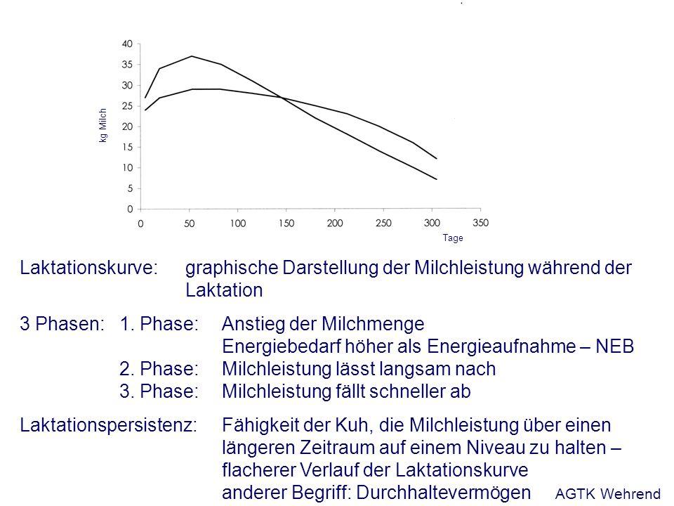 Laktationskurve: graphische Darstellung der Milchleistung während der Laktation 3 Phasen: 1. Phase: Anstieg der Milchmenge Energiebedarf höher als Ene