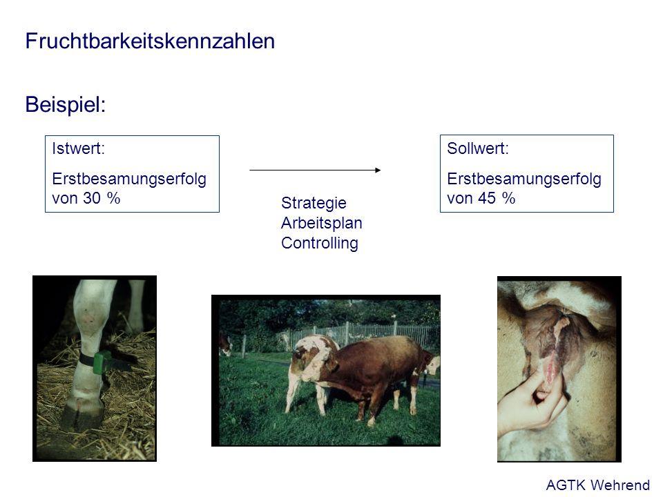 Fruchtbarkeitskennzahlen Beispiel: Istwert: Erstbesamungserfolg von 30 % Sollwert: Erstbesamungserfolg von 45 % Strategie Arbeitsplan Controlling AGTK