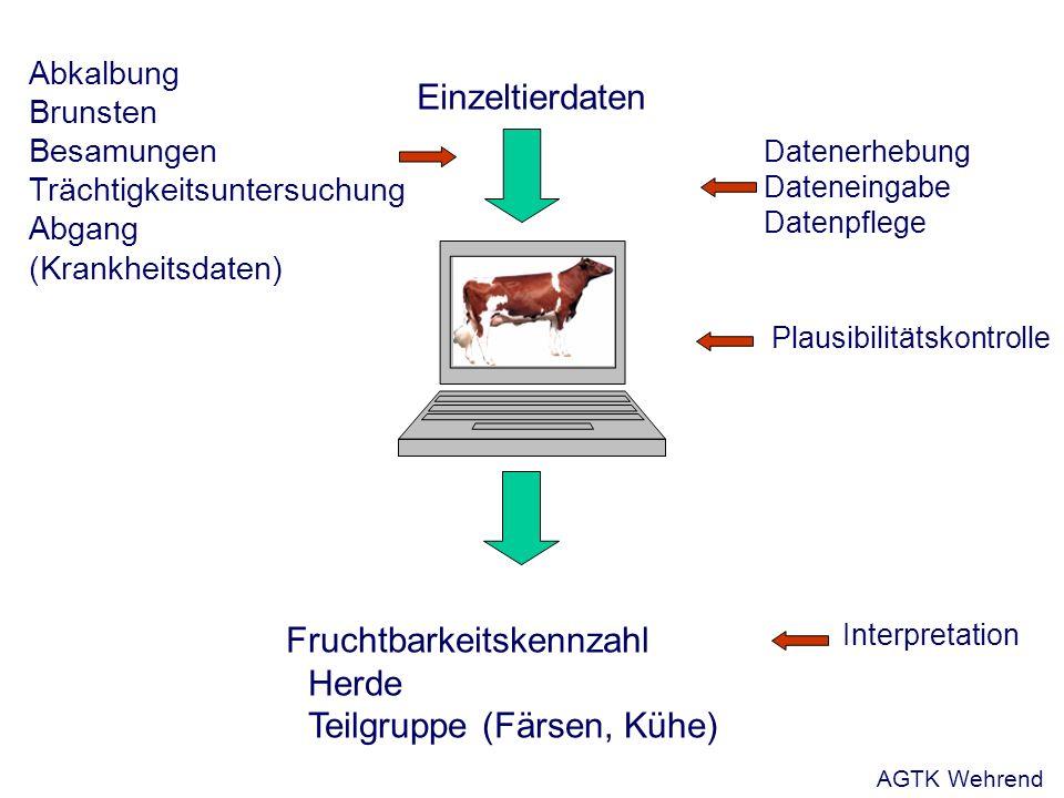 Einzeltierdaten Fruchtbarkeitskennzahl Herde Teilgruppe (Färsen, Kühe) Abkalbung Brunsten Besamungen Trächtigkeitsuntersuchung Abgang (Krankheitsdaten