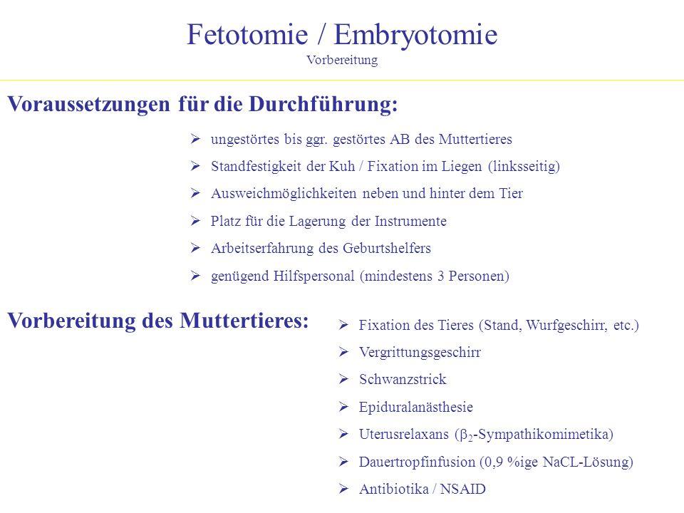 Fetotomie / Embryotomie Vorbereitung Vorbereitung des Muttertieres: Fixation des Tieres (Stand, Wurfgeschirr, etc.) Vergrittungsgeschirr Schwanzstrick