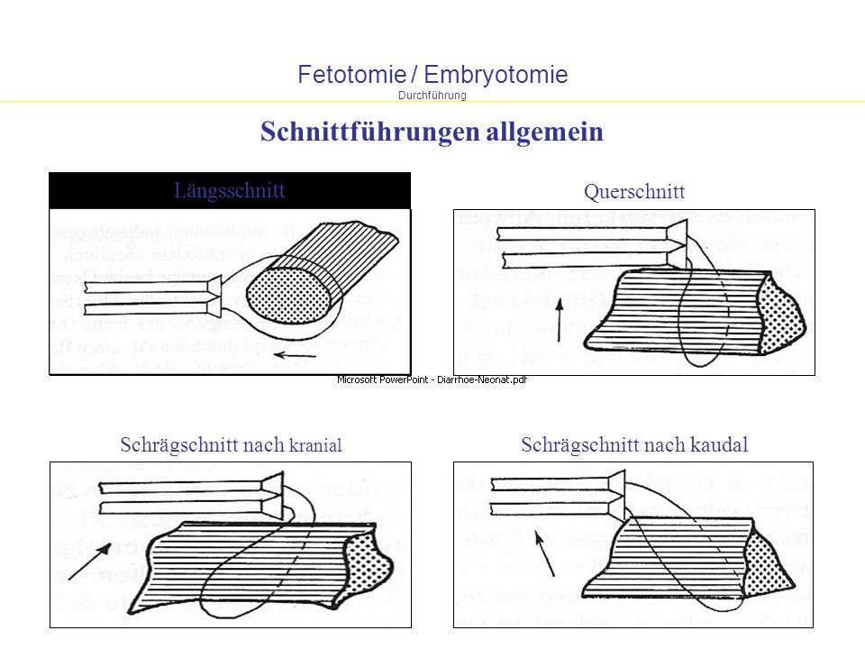 Fetotomie / Embryotomie Durchführung LängsschnittQuerschnitt Schrägschnitt nach kranial Schrägschnitt nach kaudal Schnittführungen allgemein