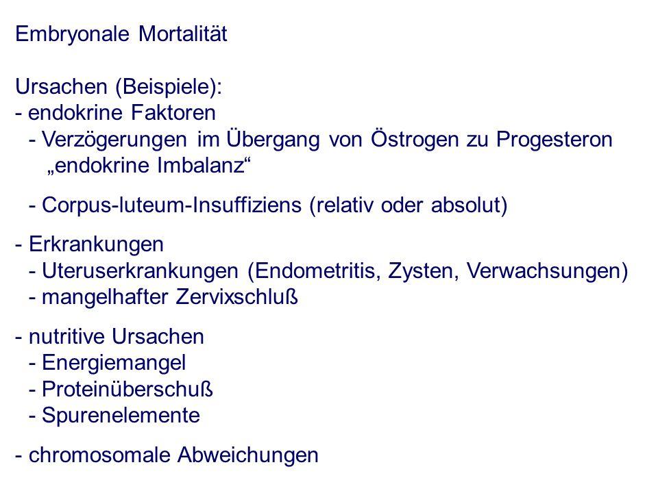 Embryonale Mortalität Ursachen (Beispiele): - endokrine Faktoren - Verzögerungen im Übergang von Östrogen zu Progesteron endokrine Imbalanz - Corpus-luteum-Insuffiziens (relativ oder absolut) - Erkrankungen - Uteruserkrankungen (Endometritis, Zysten, Verwachsungen) - mangelhafter Zervixschluß - nutritive Ursachen - Energiemangel - Proteinüberschuß - Spurenelemente - chromosomale Abweichungen