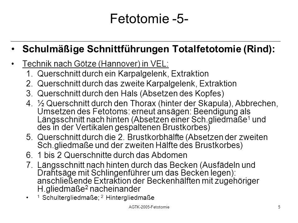 AGTK-2005-Fetotomie5 Fetotomie -5- Schulmäßige Schnittführungen Totalfetotomie (Rind): Technik nach Götze (Hannover) in VEL: 1.Querschnitt durch ein K