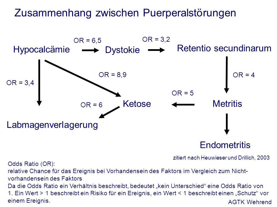 Zusammenhang zwischen Puerperalstörungen Hypocalcämie Labmagenverlagerung OR = 3,2 Retentio secundinarum Dystokie Endometritis Metritis Ketose OR = 4 OR = 5 OR = 6 OR = 3,4 OR = 8,9 Odds Ratio (OR): relative Chance für das Ereignis bei Vorhandensein des Faktors im Vergleich zum Nicht- vorhandensein des Faktors Da die Odds Ratio ein Verhältnis beschreibt, bedeutet kein Unterschied eine Odds Ratio von 1.